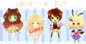 Adopt-A-Pet Auction: CLOSED by plurain
