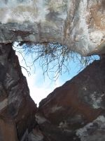 GraPevinE Cave TriP7 by abstractjet