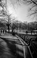 Central Park Benches by Kamal-Q
