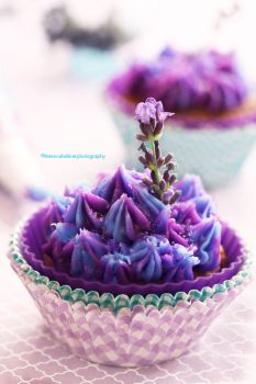 Lavender Honey Cupcake by theresahelmer