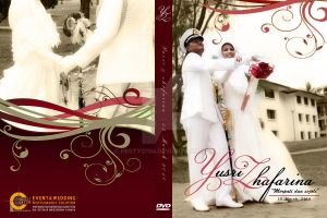 -perfect catch DVD cover- by hesty0704