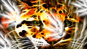 TIGER...TIGER, BURNING BRIGHT by CSuk-1T