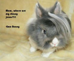 .::Emo Bunny::. by CoolDidi