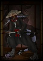 Way of the Samurai by NuclearZombie18