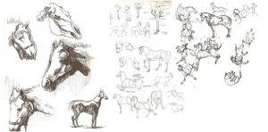 study: horses by archvermin