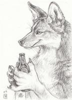 One for Coyote ACEO by thornwolf