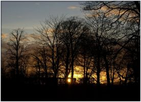Ormeau Park - Peaceful sunset 2 by Isyala