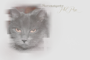 Sovereignty Plot Page Layout -- Winter 2013 by leafeh22