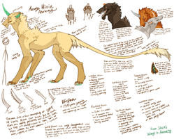 Hioin Species Sheet by Hauket