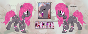 .:NO NAME:.'s Official Reference Sheet by MoonIight-Eevee
