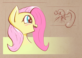 Fluttershy with squirrel by Zookz25