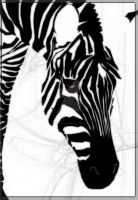 Zebra Love by missimoinsane