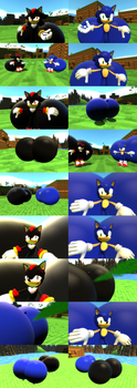 Sonic and Shadow showing their bigger butts by SRX1995