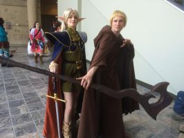 Record of Lodoss War Deedlit and Slayn at Otakon by cards344