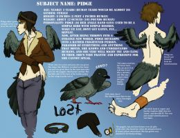 WWII Pigeon : Pidge Ref by Copperluver