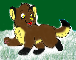 Mutt as a puppy by Randomchicken56
