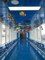 Fish tunnel at childrens hospital by KarmicCircle