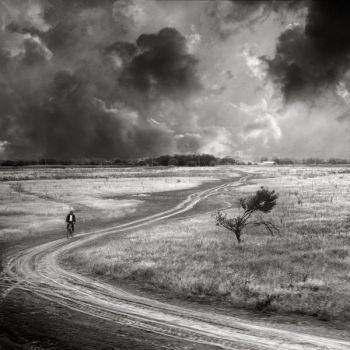 The bicyclist by Floriandra