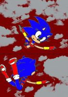 Sam the Hedgehog falling from the sky by Doggshort2