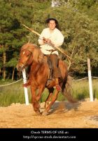 Horseback Archer 9 by syccas-stock