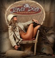 Java Dog by GWBurns
