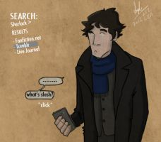 Sherlock Meets the Internet by superfizz