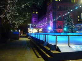Natural History Museum Ice Rink by ggeudraco