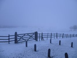 The icy fence by 003145