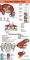 Tom the Fiddler Crab - Reference sheet by labba94