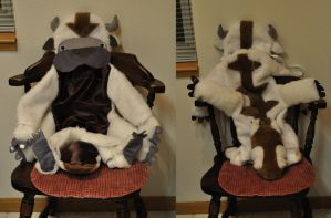 Little Kid Appa Costume by Caresse-par-la-lumie