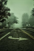 A Misty Morning: The Road by ddsk1191