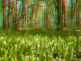 The Green Carpet 2 3D Anaglyph by yellowishhaze