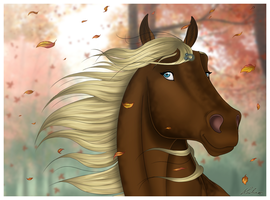 Autumn wind by Wild-Hearts