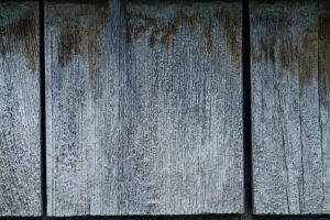 Wood Shingle Texture by Force4Photos