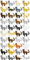 Every Known Thunderclan cat by cinderspark