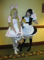 AAD #9 - Bunny Maid and Kitty Maid by vincent-h-nguyen
