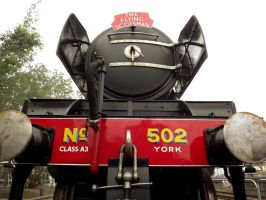 Railfest 2012 - Flying Scotsman by 2509-Silverlink