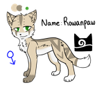 Warrior Cats || Rowanpaw by Soraskynin