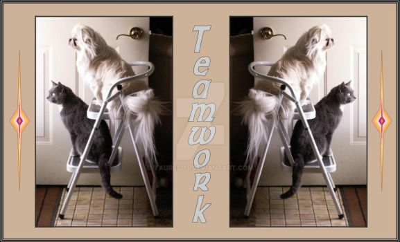 Teamwork by Taures-15