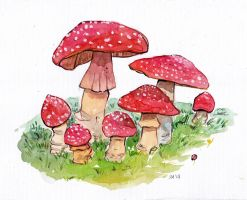 Mushroom Watercolor by Shricka