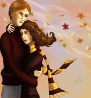 Ron and Hermione by Elenatintil