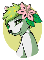 Shaymin Headshot by FerianMoon