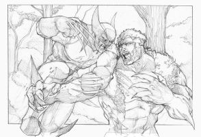 Wolverine VS Sabertooth by jjakec