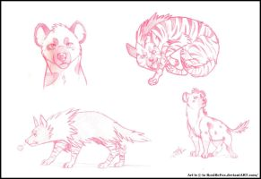 Hyena Sketches~ by RoxiBeFox