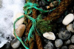 Flotsam and Jetsam by RachelP16