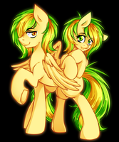 WoodenToaster twins by Twigileia