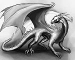 Black and White Dragon by OrmIrian