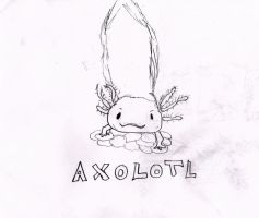 Axolotl by zendevil