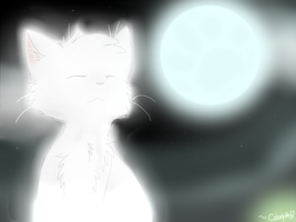 Cat's blue moon by Snow-Berries