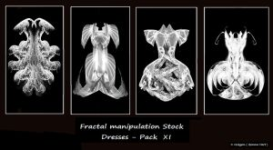 Fractal Stock - Dress Pack XI by rockgem